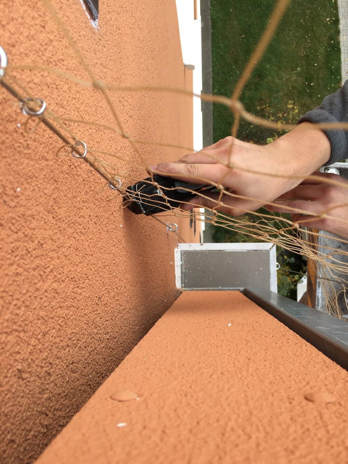 Instalace sítě proti holubům